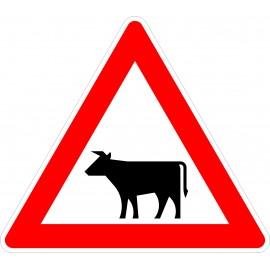 Verkehrszeichen-Nr.:101-12 Viehtrieb-rechts
