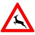 Verkehrszeichen-Nr.: 142-10 Wildwechsel Aufstellung rechts